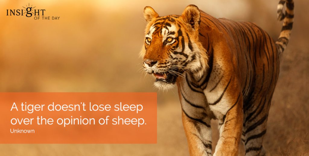 Psychic readings and dream interpretation. Distance Healing & Life coaching. Unlimited psychic readings available. A tiger doesn't lose sleep over the opinion of sheep.