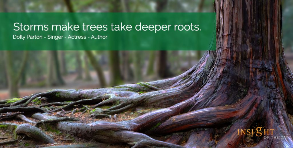 Storms make trees take deeper roots. Dolly Parton - Singer - Actress - Author For your Psychic Readings , Dream interpretation & Psychic Distance Healing visit the store. Read some fun stuff on our fb page. Sometimes we all need a little help to achieve our goals. My dream is that one day a lot of people will find my little ramblings good enough to like and share with your friends. People who need help always seem to find their way to me. That is something I know. I just hope that with your help others will be able to find me a little easier. Wishing you Love & Light Have a wonderful day Venus